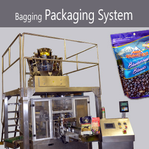 Bagging Packaging System